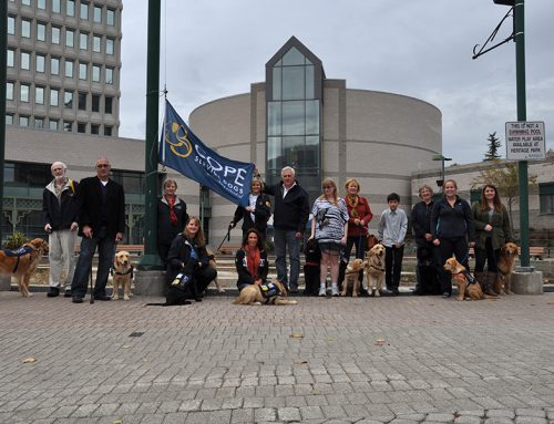 COPE Service Dogs Week in Barrie – Oct. 2014