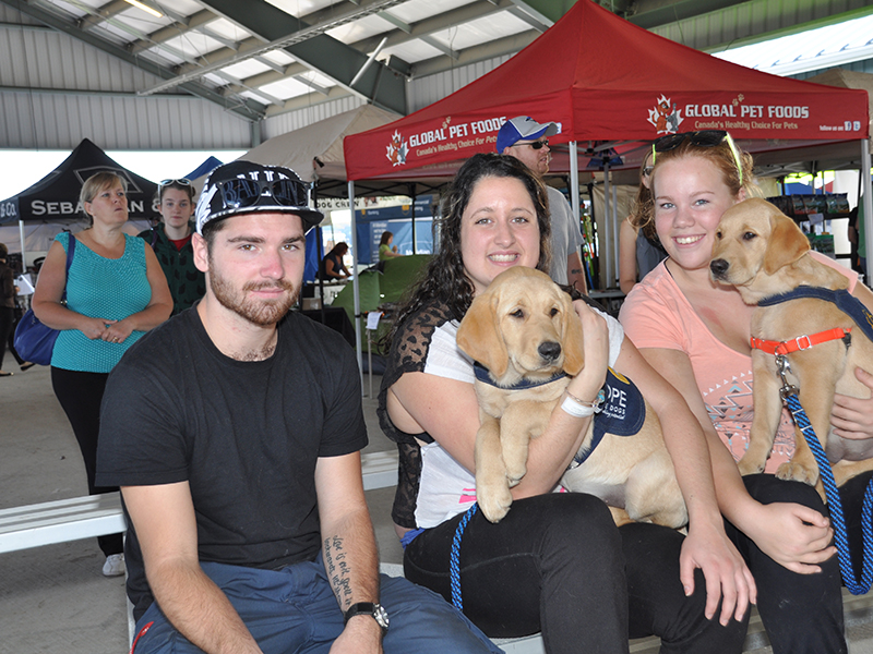 COPE Service Dogs at Barkfest Photo 3