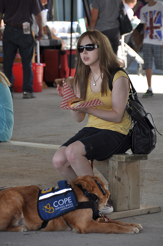 COPE Service Dogs at Barkfest Photo 9