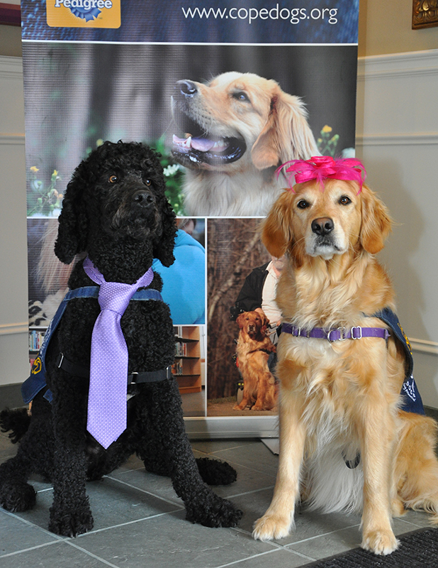 COPE Service Dogs Mothers Day High Tea Photo 2