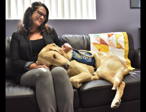 This Amazing Dog has been a lifesaver – Orillia Matters – Sept. 2018