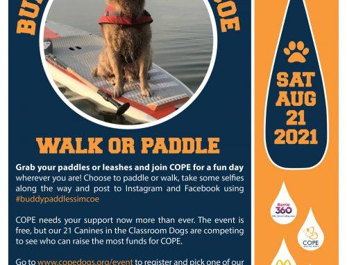 Buddy Paddles Simcoe – July 2021