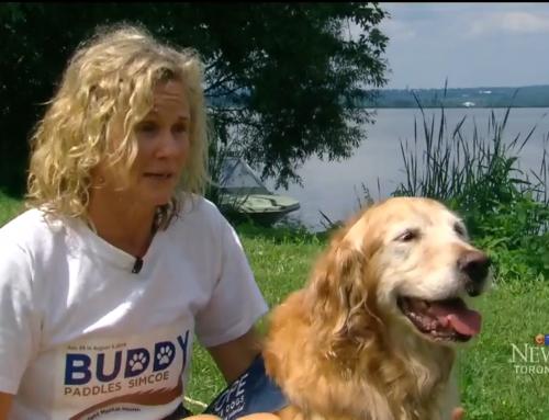 Jane and Buddy on CTV Toronto – Aug. 5, 2018